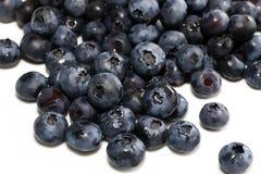 蓝莓新鲜的堆 免版税库存照片