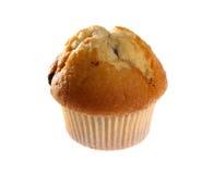 蓝莓新鲜的松饼 免版税库存图片
