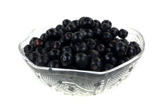 蓝莓新鲜的被采摘的盘 免版税库存图片