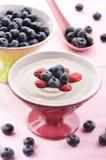 蓝莓新鲜的酸奶 免版税库存照片