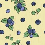 蓝莓无缝的背景 库存照片