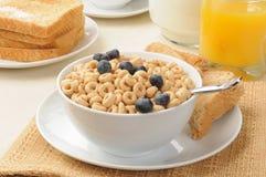 蓝莓早餐食品多士 库存图片