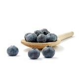 蓝莓木匙子 库存图片