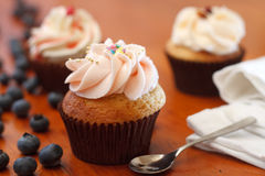 蓝莓杯形蛋糕 免版税图库摄影