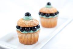 蓝莓杯形蛋糕 库存照片