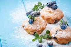 蓝莓松饼 自创被烘烤的杯形蛋糕用蓝莓,新鲜的莓果,在蓝色木背景的搽粉的糖 顶视图 图库摄影