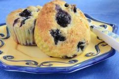 蓝莓松饼 免版税库存照片