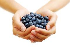 蓝莓极少数 免版税库存照片