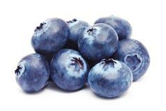 蓝莓查出的白色 图库摄影