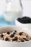蓝莓格兰诺拉麦片 免版税图库摄影