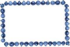 蓝莓框架 库存照片