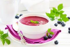 蓝莓汤 免版税图库摄影
