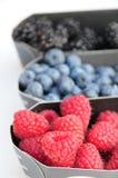 蓝莓混合莓 图库摄影