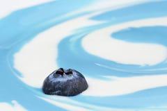 蓝莓漩涡 库存照片