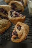 蓝莓烤饼 图库摄影