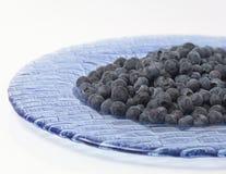 蓝莓牌照 免版税库存照片