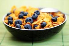 蓝莓玉米片果子 图库摄影