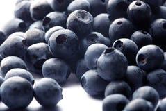 蓝莓白色 库存照片