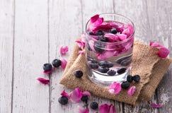 蓝莓的新水果味道的被灌输的水混合和上升了 免版税库存图片