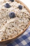 蓝莓碗燕麦 库存图片
