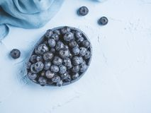 蓝莓背景拷贝空间 免版税图库摄影