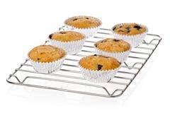 蓝莓自创松饼 图库摄影
