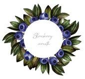 蓝莓花圈水彩,邀请 向量例证