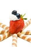 蓝莓草莓白色 图库摄影