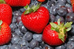 蓝莓草莓 库存照片