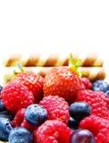 蓝莓莓草莓白色 免版税库存照片