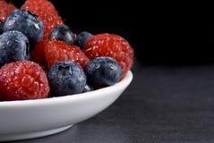 蓝莓莓 图库摄影