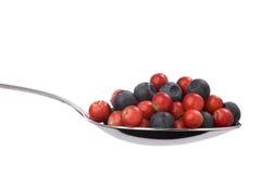 蓝莓蔓越桔充分的匙子 库存照片