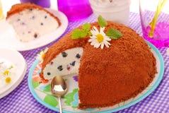 蓝莓蛋糕巧克力碎屑顶部 免版税库存图片