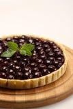 蓝莓蛋糕干酪 免版税图库摄影