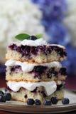 蓝莓被鞭打的蛋糕奶油 免版税库存照片