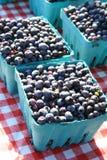 蓝莓配件箱 免版税库存图片