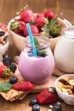 蓝莓酸奶和格兰诺拉麦片成份 免版税库存照片