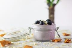 蓝莓酸奶照片用杏仁和干芒果,与巴西树干在未聚焦的背景中 库存图片