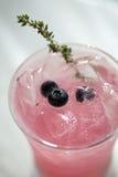 蓝莓饮料粉红色麝香草伏特加酒 图库摄影