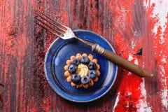 蓝莓馅饼 库存图片