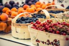蓝莓,莓,草莓,樱桃森林结果实 从事园艺,农业、收获和森林概念 免版税库存照片