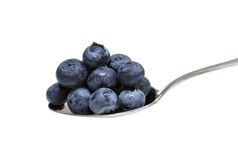 蓝莓 库存图片