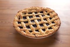蓝莓Pie_2013-1 免版税图库摄影