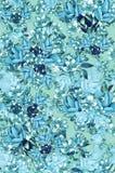 蓝蓝玫瑰 库存图片