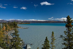 蓝绿色各种各样的树荫在冰川的哺养了Kluane湖 免版税库存图片