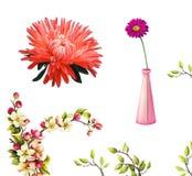 蓟花,在花瓶的雏菊,树绽放 免版税库存照片