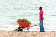 蓬塔CANA,多米尼加共和国- 2017年5月22日:有推车的一个人在海滩整理 复制文本的空间 免版税库存照片