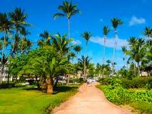 蓬塔Cana,多米尼加共和国- 2013年2月02日:在棕榈下的VIK竞技场布朗卡旅馆 库存照片