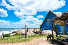 蓬塔del蝙蝠鱼Beach,乌拉圭 免版税图库摄影