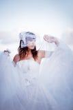 蓬松的新娘 免版税图库摄影